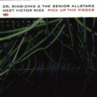 DR. RING DING & THE SENIOR ALLSTARS