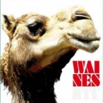WAINES