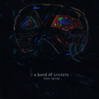 A BAND OF CRICKETS